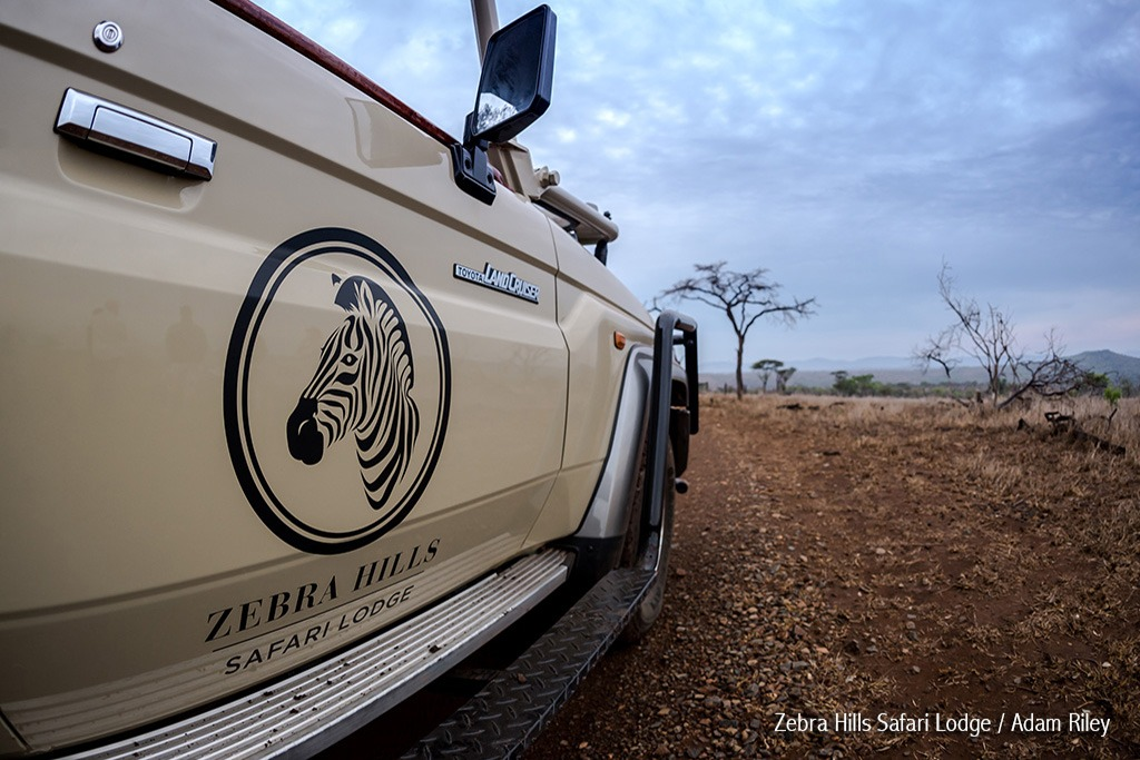 Game Drives in Manyoni Private Game Reserve - Zebra Hills Safari Lodge